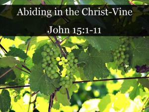 abiding in the vine