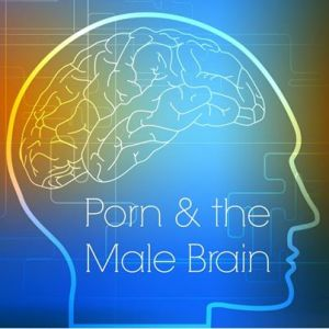 porn male brain